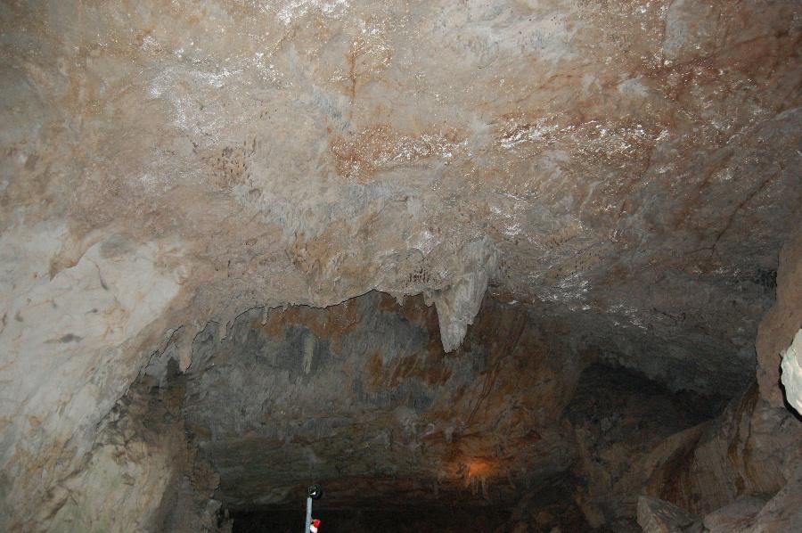 秋芳洞の天井の写真