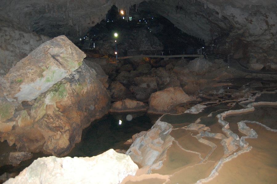秋芳洞の石の表面に緑のコケも見えますね