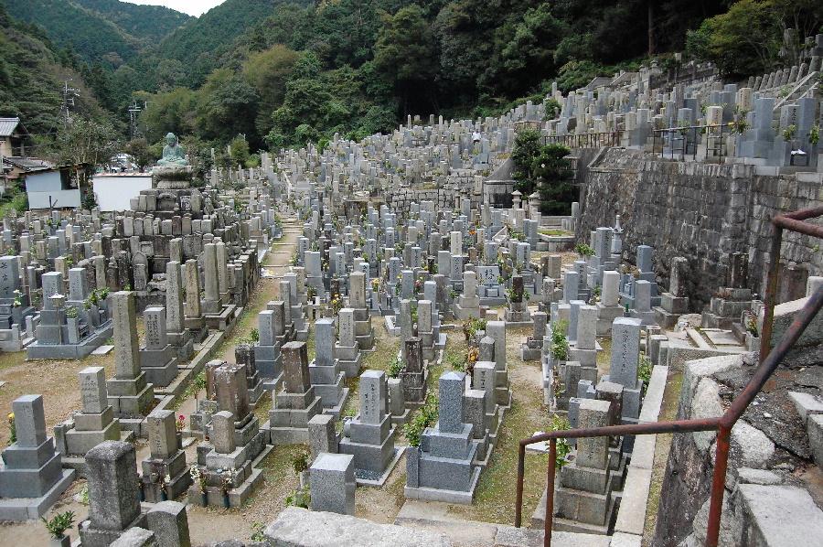 墓地の高台から、戦死者の墓石を探します
