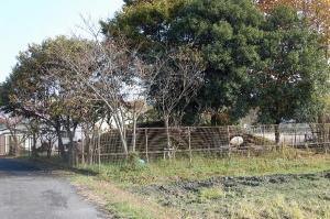 水尾村の忠魂碑跡(築山)