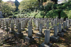 旧大津陸軍墓地のEブロックの一部から