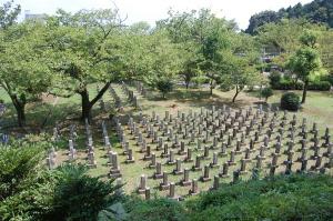 旧大津陸軍墓地 手前が最大のEブロック。大木の向こうの33の墓碑をFブロックと名づました
