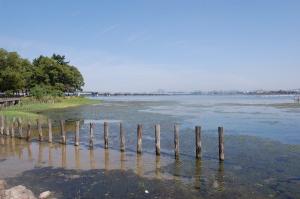 膳所公園付近の琵琶湖