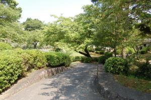 緑に囲まれた旧大津陸軍墓地