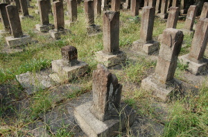 記憶を媒介する機能をうしない石くれとなっていく墓石たち