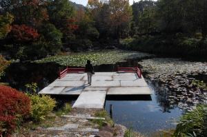 「スイレン池」@銅鐸博物館・弥生の森歴史公園