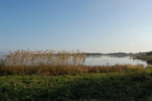 午後3時の琵琶湖にて