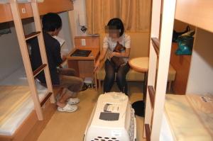 ペットのベッドがあるわけではありません、ペット同伴専用船室