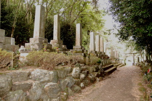 田中共同墓地の入り口に並ぶ戦没者の墓碑群