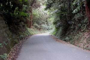 なんでもない山道。しかし、これが「田原坂」です