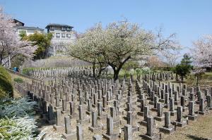 4月には桜が美しい旧大津陸軍墓地(手前がEブロック)
